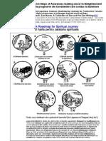 Cei 10 Tauri-Stadiile progresive ale Constientei care conduc la Iluminare