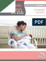 Curso Sobre Aleitamento Materno
