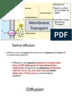 membrane transport revision