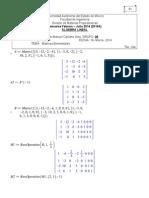 tarea4algebra