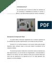 Informe Inspeccion Visual - Copia