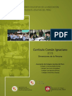 Curriculum Comun Ignaciano FINAL