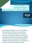 1nociones de Ecosistema y Desarrollo Sostenoble