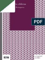 Fernando Pessoa - Lluvia Oblicua