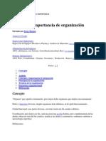 La Organizacion Concepto e Importancia