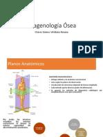 Imagenología Ósea y sus Variantes Patológicas