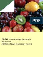 1008399072.FRUTO Y SEMILLA. Prof. G. Jaime- Biotecnología (1)