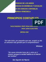 Origen de Los PCGA