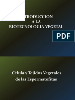 1193975885.Clase 1 (Biotec Veg) 1era Parte