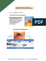 Dengu Info