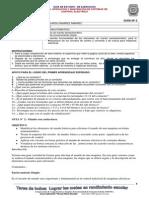 Diseno Operacion y Mantencion de Los Sistemas Electricos_3_guia 2 Copy