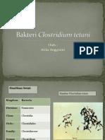 Bakteri Clostridium Tetani