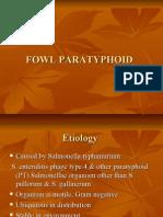Fowl Paratyphoid by Dr Bhavesh Zapadia