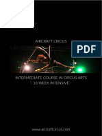AirCraft Circus Intermediate Course in Circus Arts Prospectus 2018