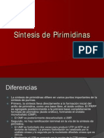 2-MetabolismodePirimidinas.pdf