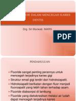 Peranan Fluor Dalam Mencegah Karies Dentis