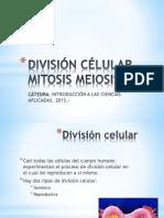 Divisi n c Lular