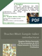 taller-teacher work samples