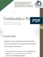 Combustão e Pirolise.pdf