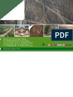 Unesco Nasca Web
