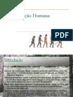 Evolucao Humana