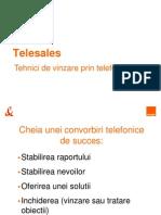 TS_tehnici de Vinzare