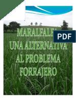 Mar Alfalfa