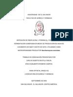 Obtención Vitamina B12.pdf