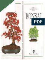 Bonsai 101 Praktycznych Porad