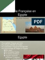 french2013egypt