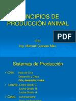 Ganado de Carne - Presentacion - Panama