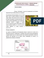 Enfermedades Infecciosas y Parasitarias en Cerdos
