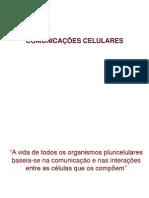 Comunicação celular COPIA