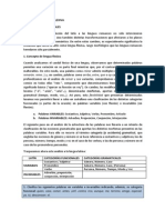 Lengua Latina El Latc3adn Como Lengua Flexiva