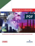 Fisher Reguladores Industriales