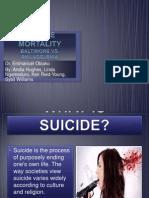 nurs 520 suicidal presentation