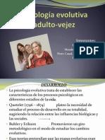 Psicología evolutiva adulto-vejez