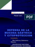 DEFENSA DE LA MUCOSA GASTRICA