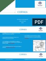 Cornea (Upao)