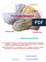 Fisiologia Sensorial 110328214037 Phpapp01
