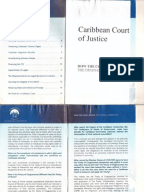 introduction to the jamaican legal system essay Jamaica's death penalty laws and how they are applied, including death row and execution numbers, death-eligible crimes, methods of execution, appeals and clemency, availability of lawyers, prison conditions, ratification of international instruments, and recent developments.
