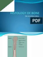 Bone 2011 First Year