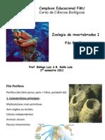 4. Filo Porifera