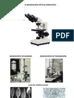 Partes Microscopio