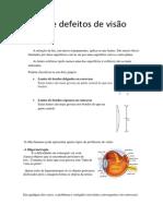 Lentes e defeitos de visão- DinisCosta e DanielMachado