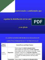 Condiciones Nutricionales Microorganismos