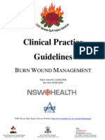 BURNS -Clinicalpractice and Guidelines