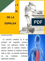 Anatofisiologia y Orden Postural