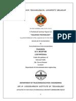 Technical Seminar Report