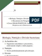 Aula - 05 Bacterias